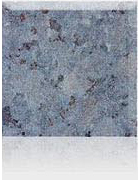 Labrador Grovslipad