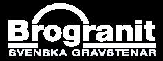 logo_vit_50